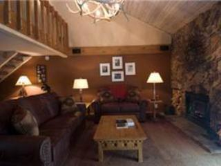 #309 Fascination - Image 1 - Mammoth Lakes - rentals