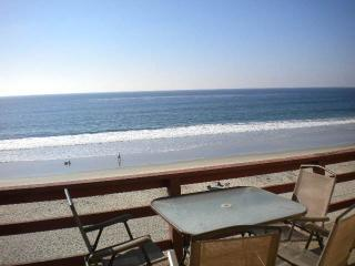 Heavenly 1 Bedroom/1 Bathroom House in Carlsbad (3009 #D Ocean St.) - Carlsbad vacation rentals