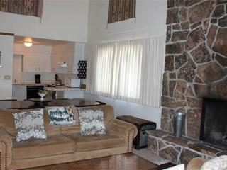 3 bed /2 ba- FOUR SEASONS II #8 - Wyoming vacation rentals