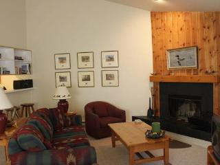 2 bed /2 ba- MOUNTAIN MAPLE #4 - Wilson vacation rentals