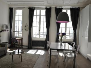 Beautiful apartment -Ile Saint Louis-A/C-Free wifi - 4th Arrondissement Hôtel-de-Ville vacation rentals
