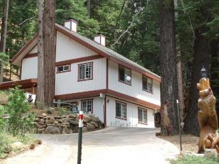 Cozy Bear South - Yosemite National Park vacation rentals