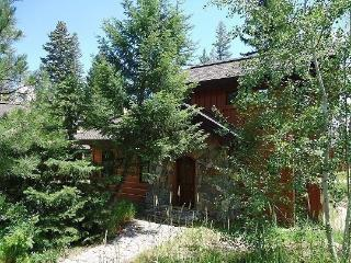 Rock Creek Cottage 4 -Two Bedrooms, 2.5 baths. Sleeps 6. WIFI and Pet Friendly. - Tamarack vacation rentals