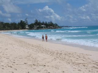 Beautiful Condo in St. Lawrence Gap, Barbados - Saint Lawrence Gap vacation rentals