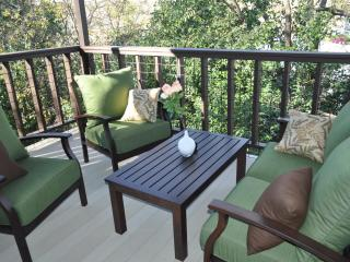 $100/NIGHT 'till 10/2. Great patio & view by Park! - Austin vacation rentals