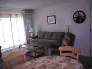 Ocean Edge 2 BR Townhse  A/C,Pools,Great Yard,WiFi - Cape Cod vacation rentals
