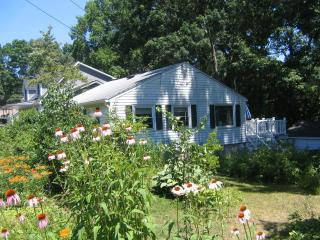 Niantic Beach Cottage - Niantic vacation rentals
