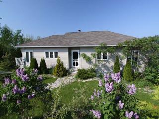 Sumac Studio cottage (#678) - Bruce Peninsula vacation rentals