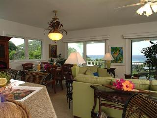 Palm Terrace - Chocolate Hole vacation rentals