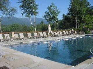 Topnotch Resort Home Stowe, Vermont BOOK DIRECT!!! - Stowe Area vacation rentals