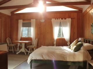 Private Beamed Cabin Opposite Swimming Beach - Sechelt vacation rentals