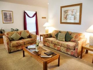 SD3P2660HA 3 BR Beautiful Holiday Villa Well-fitted & Spacious - Haines City vacation rentals