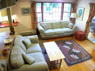 DOG FRIENDLY with Private Inground Pool - BA0426 - Barnstable vacation rentals