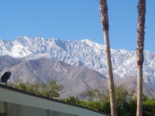 Hot Tin Roof - Book 3 nights = 4th night for FREE - Palm Springs vacation rentals