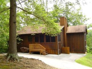 'Mountain Breeze'-Beautiful, Wireless, No Fees - Townsend vacation rentals
