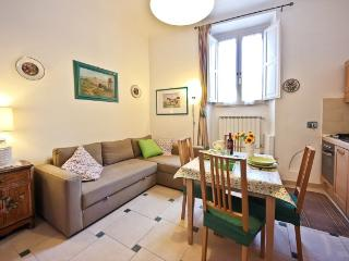 Giovanni Angelico ground floor - Florence vacation rentals