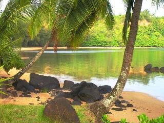 Anini Beach! Couples, Families, Reunions, Deals! - Princeville vacation rentals