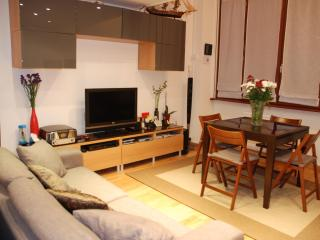 Paris  Beautiful 1BR  Apartment  Champs Elysees, - Paris vacation rentals