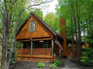 Tree Haus - McHenry vacation rentals