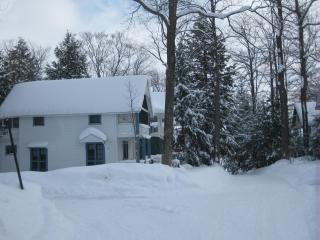 Cottage at Chautauqua Institution, New York state. - Chautauqua vacation rentals