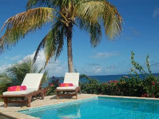5 BR Ocean View Villa, New Pool, Steps to Beach - Vieques vacation rentals