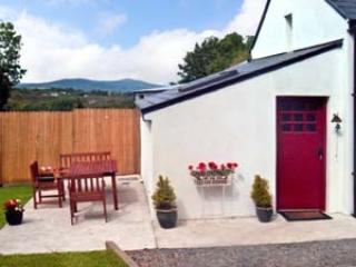 Relax  with glass of wine on secluded patio - 2 bedroom cosy country cottage - Kenmare - rentals