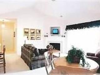 The Shores at Mackinaw - Northeast Michigan vacation rentals