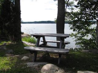 Private picnic table overlooking the ocean. - The Moxie Oceanfront Luxury Cottage