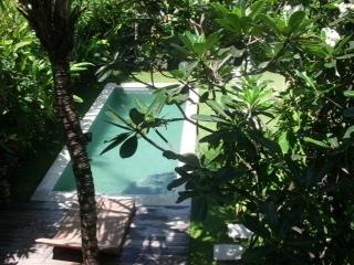 An Oasis close to the Beach - Bali vacation rentals