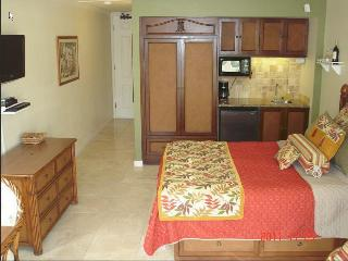 $79-99 - Oceanfront Resort/Oceanview Units 244/256 - Kapaa vacation rentals
