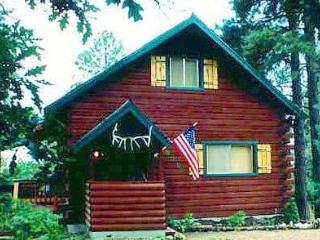 Alpine Haven Cabin, Views, Ski, Hot Tub - Pagosa Springs vacation rentals