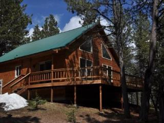 Trailshead Cabin - close to snowmobiling! - South Dakota vacation rentals