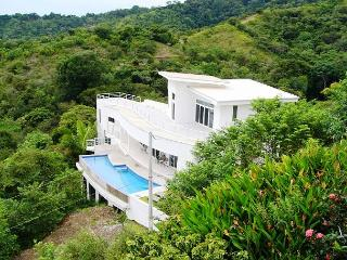 Oceanview architectural masterpiece above Playa Hermosa, infinity pool, WiFi - Jaco vacation rentals