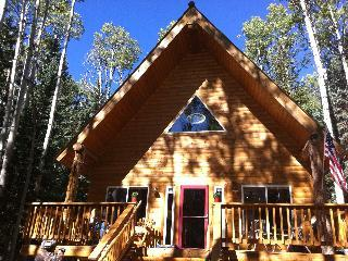 Perfect Mountain Getaway-All Seasons-Cimarron,CO. - Cimarron vacation rentals