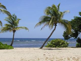 Caribbean Retreat - Saint Croix vacation rentals