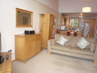 KESWICK BRIDGE 20, 3 Bedroomed, Keswick, Christmas week - Keswick vacation rentals