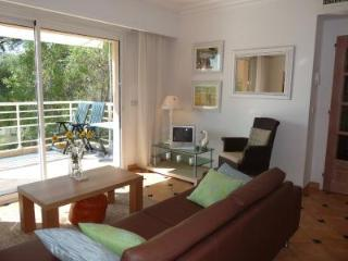 Viola - Cannes vacation rentals