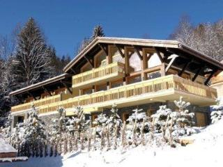 Large Luxury Chalet Exclusive Private Setting - Les Houches vacation rentals