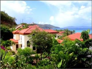 Delightful Villa Bellamare with pool, view on Mahoe Bay and beach access - Mahoe Bay vacation rentals