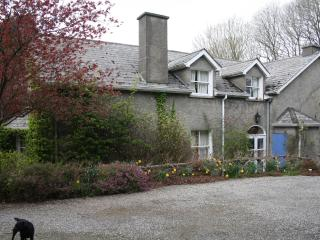 Moate House Bed & Breakfast Rathmore Naas  Kildare - County Kildare vacation rentals