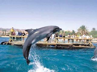 Nice vacation apartment in Eilat, Israel @ Red Sea - Eilat vacation rentals