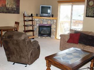PV21B Ideal Townhouse w/Fireplace, King Bed, Clubhouse, Garage, Wifi - Silverthorne vacation rentals