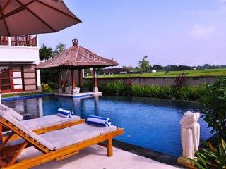 Luxury 2 and 3 bedroom villa in The south of Bali - Canggu vacation rentals