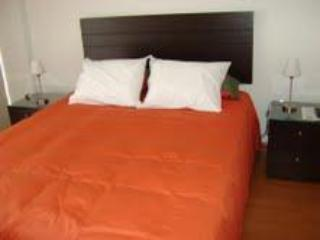 Brand New Luxury Apartment In The Barranco - Barranco vacation rentals