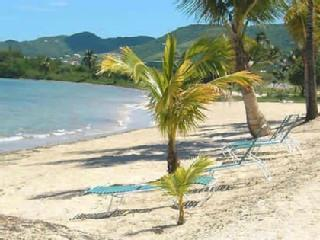 Beach outside your door! Ahhhhhhh Paradise! - Vacation Condo on the Beach Plus Spectacular Pool - Christiansted - rentals
