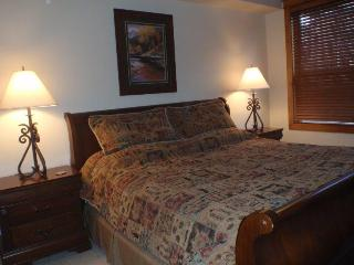 4 bedroom/4 bath Black Bear Condo! - Crested Butte vacation rentals