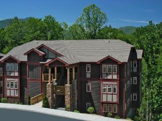 Luxury 3/3 Condo Echota Resort Foscoe -Fall $149nt - Blue Ridge Mountains vacation rentals