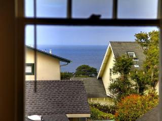 3344 - Sophisticated Beach Decor, Walk to Restaurants & Shops! - Pacific Grove vacation rentals