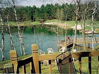 The Lakeside Pardise Home - Wisconsin vacation rentals