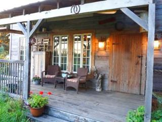 Cozy Reclaimed Cabin with Hot Tub near Cedar Point - Bellevue vacation rentals